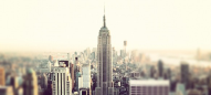 NYC by Rosie Scammell