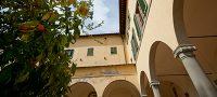 Orange tree in front of Convento di San Domenico